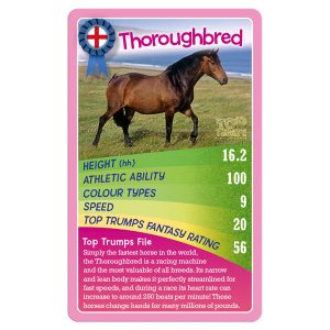 Horses and Ponies and Unicorns! Top Trumps